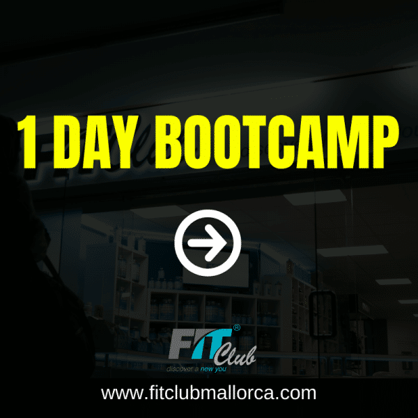 1 Day Bootcamp